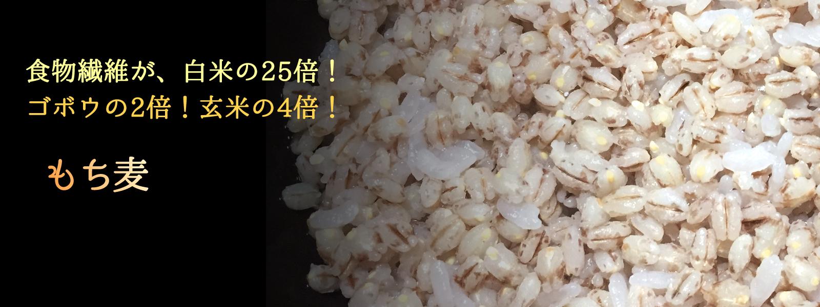 食物繊維が、白米の25倍!ゴボウの2倍!玄米の4倍! もち麦